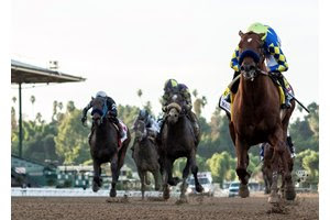 Bettors helped Santa Anita Park to a record opening day on a card that saw Charlatan deliver a dominating performance in the Malibu Stakes