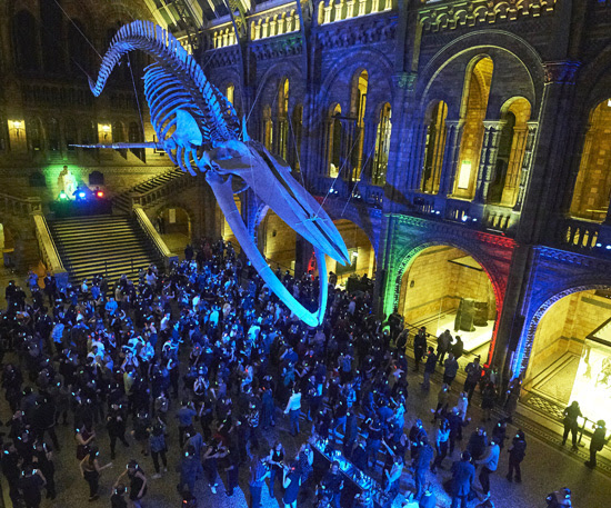 Silent Disco in Hintze Hall