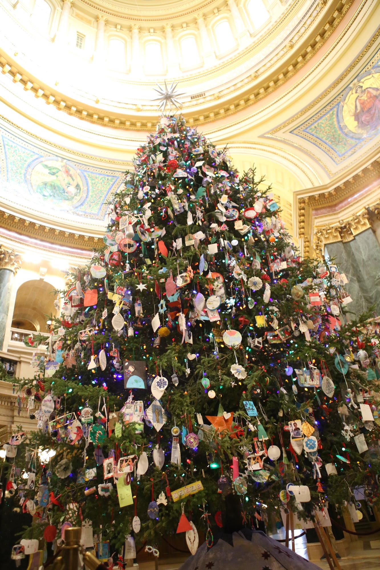 Holiday Tree Lighting 2
