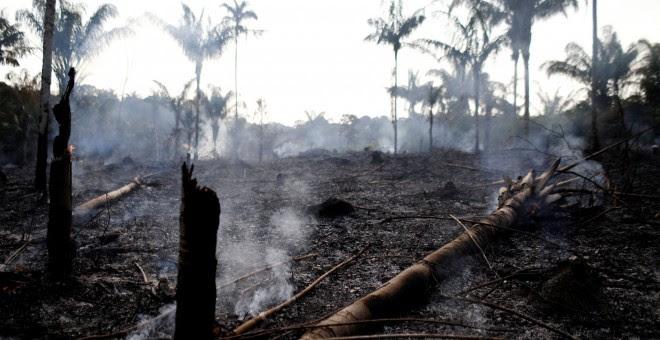 Una de las zonas afectadas por el fuego en la selva del Amazonas. / Reuters