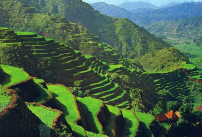 Top 10 Best Things to Do in Philippines