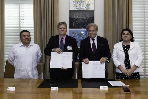 La OEA y el Migration Policy Institute promoverán respuestas regionales al fenómeno de la migración