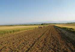 Μετανάστες από την Ελλάδα οι πρώτοι Ευρωπαίοι γεωργοί