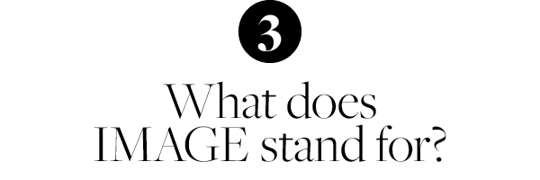3. What does IMAGE stand for?
