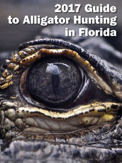 2017 Guide to Alligator Hunting in Florida