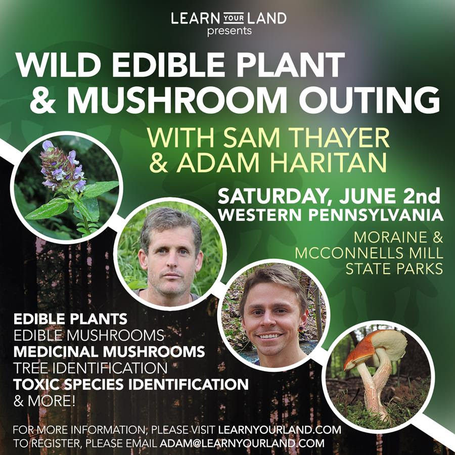 Wild Edible Plant & Mushroom Outing with Sam Thayer & Adam Haritan