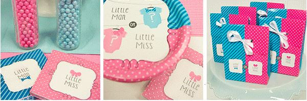 Gender Reveal Baby Shower Party Supplies