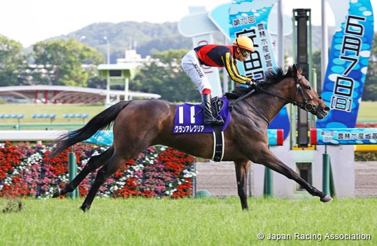 Gran Alegria (JPN) ridden by Kenichi Ikezoe. Photo by the Japan Racing Association.