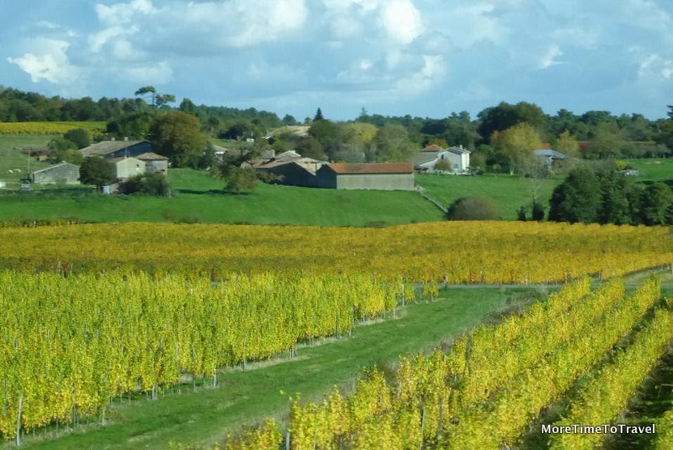 Vineyard view along the Dordogne on a river cruise in Bordeaux, France (Credit: MoreTimeToTravel.com)