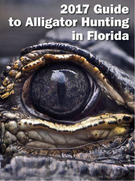 Alligator guide