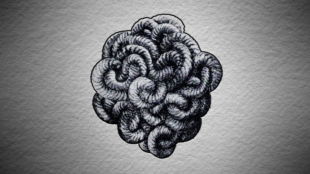 The Gordian Knot Cfy3uUL9WR