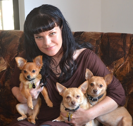 2016 Remember Me Thursday Official Spokesperson Pauley Perrette with rescue pups, Rosie, Grace and Bug