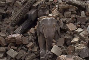 Les éléphants de Bhaktapur Durbar Squareaprès le séisme