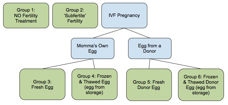 schematic of pregnancy types studied