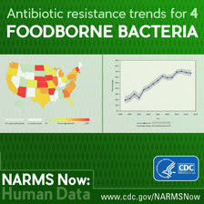 NARMS Now: Human Data - antibiotic resistance trends for 4 foodborne bacteria