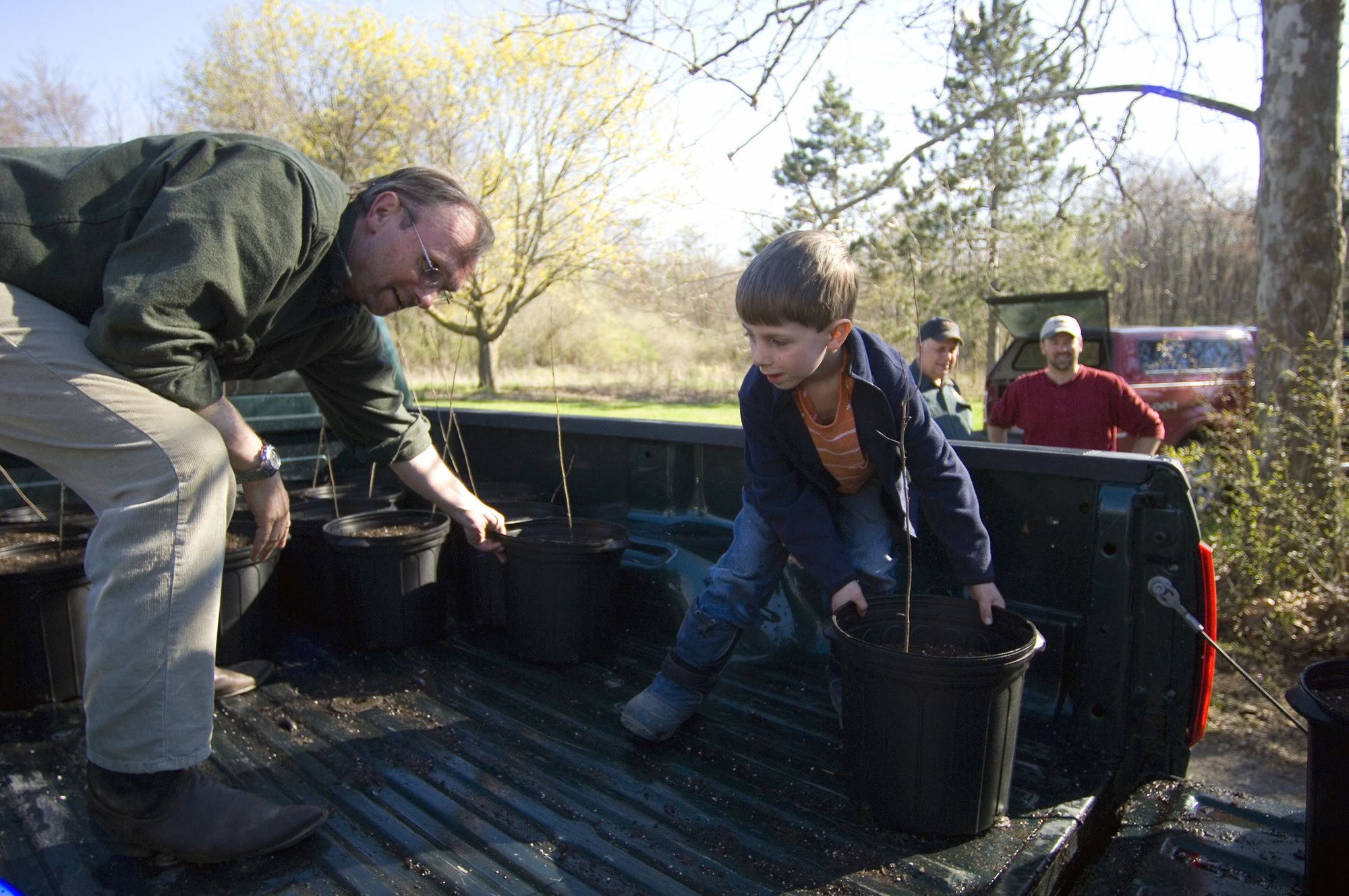 In a turkey habitat improvement project aided by volunteers from the Wild Turkey Federation, crabapple trees are repotted at Rose Lake.