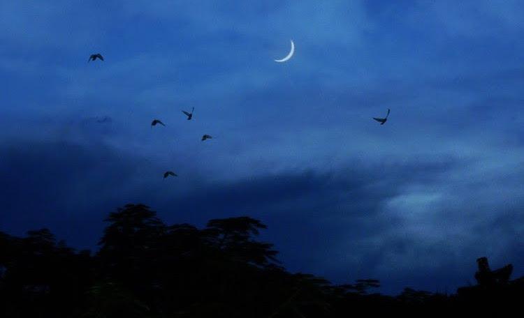 Những ngày trước rằm Âm Lịch thì phần khuyết của trăng sẽ chỉ về hướng Đông.