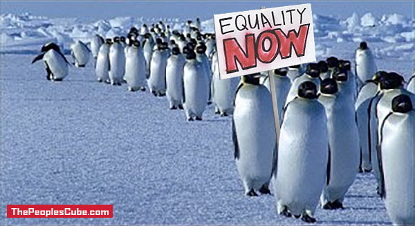 Penguins_Equality_Now.jpg