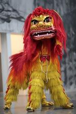 Lion CNY 14