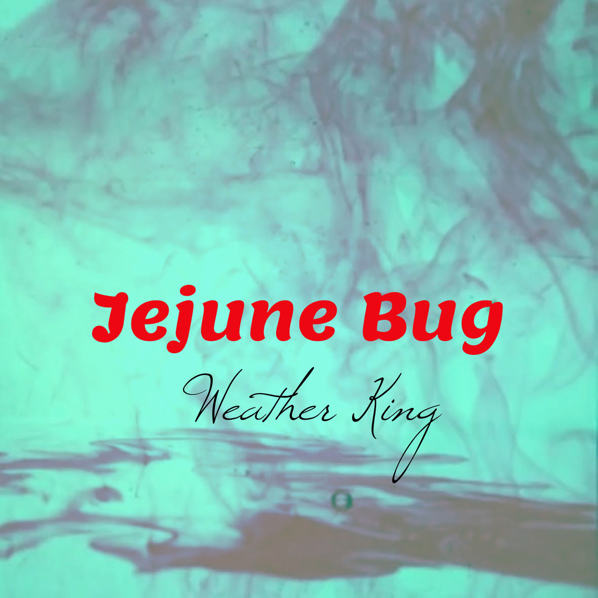 Jejune Bug cover art