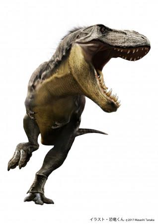 ティラノサウルス(イメージイラスト)