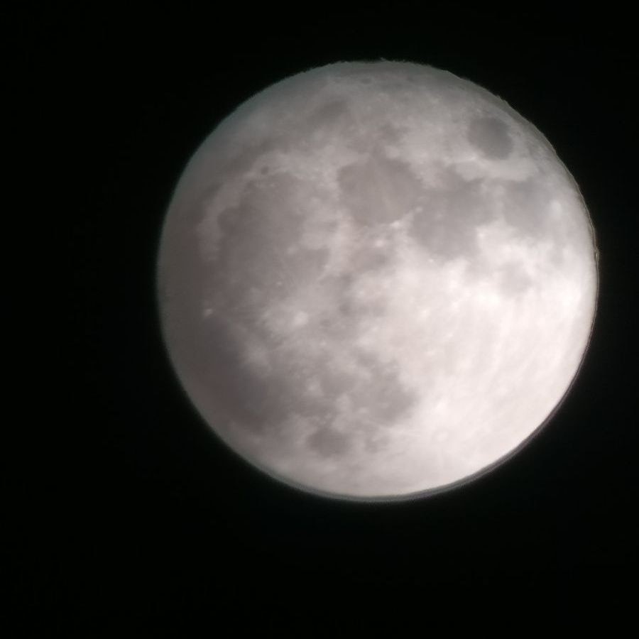 Tai Moon