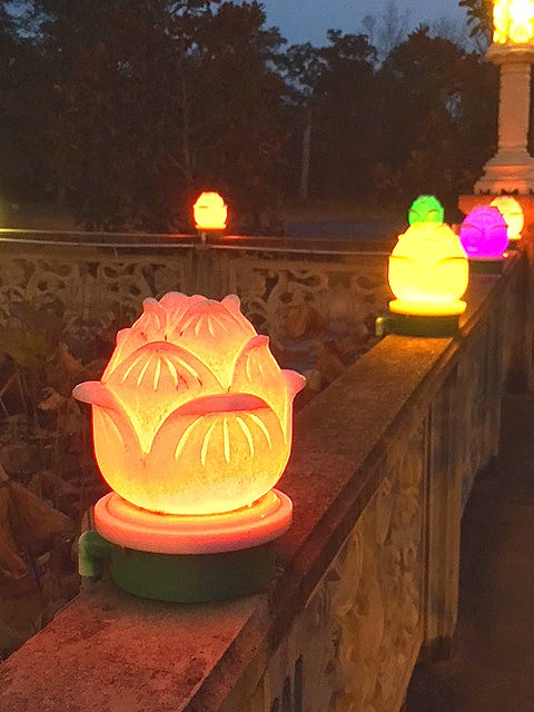 http://www.damau.org/wp-content/uploads/2016/11/Autumn-Lanterns-10-27-16.jpg