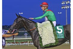 Talk Veuve to Me in the winner's circle after the Indiana Oaks at Indiana Grand