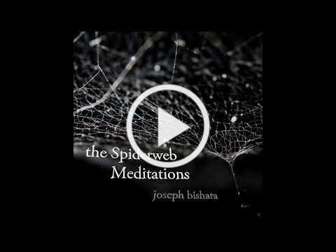 Spiderweb Meditation #4 clip
