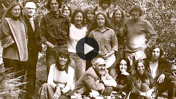 Institute-Gang-700-video
