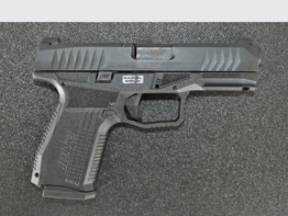 Range Report: Arex Rex Delta 9mm Service Pistol