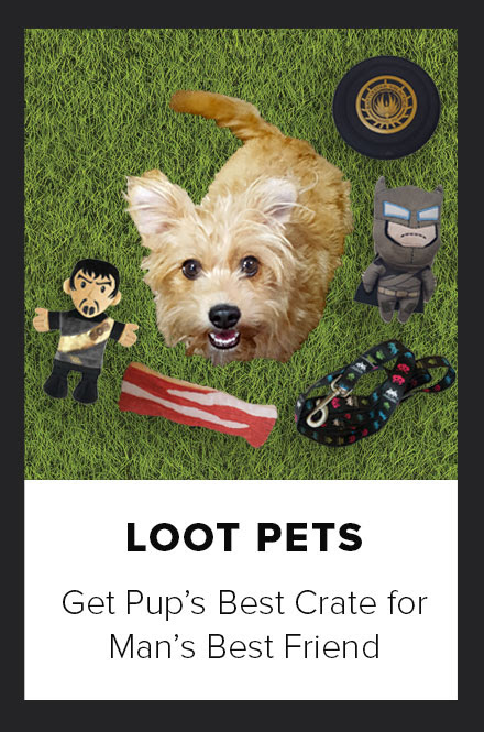 Loot Pets Get pup's best Crate for man's best friend