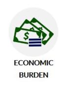 Economic Burden Image