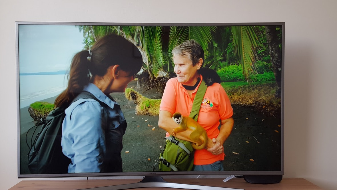 Carol, Davina McCall, and a baby squirrel monkey and baby howler monkey