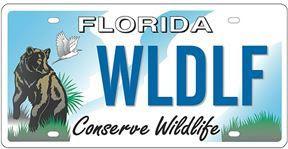 Conserve Florida car tag