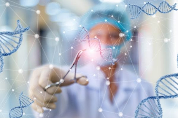 CRISPR gene editing applications