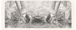 Real Worlds: Dobell Australian Drawing Biennial 2020