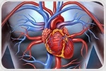 Three landmark studies provide better understanding of sudden cardiac arrest