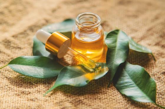 Lutter contre les virus de l'hiver avec l'huile essentielle de ravintsara