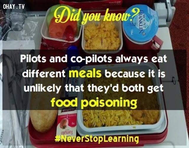 15. Phi công và phụ lái luôn ăn bữa ăn khác nhau để tránh cả hai cùng ngộ độc thực phẩm.,sự thật thú vị,những điều thú vị trong cuộc sống,khám phá,sự thật đáng kinh ngạc,có thể bạn chưa biết