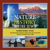 Nature, Jews and History banner