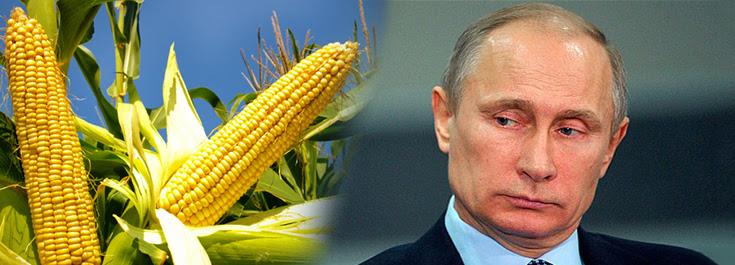 Rusia, cultivos