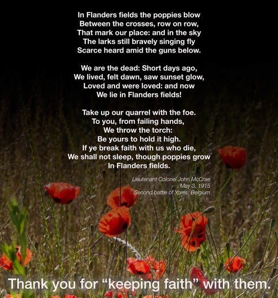 In Flanders Fields Poem vs2