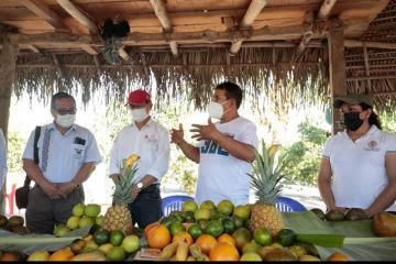 Agricultores de Madre de Dios replicarán los proyectos productivos de San Martín