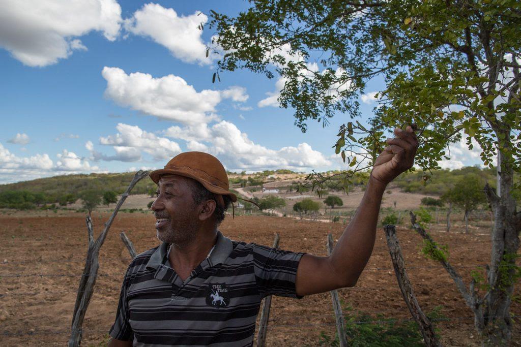 Benedito Domingos que trabalha com espécies nativas da caatinga como fitoterápico. Foto: Flavio Forner