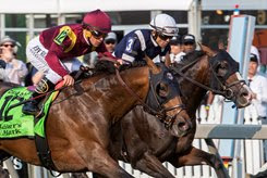 Catholic Boy (outside) edges Admission Office to win the Dixie Stakes at Pimlico Race Course