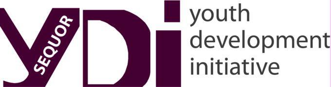 YDI Maroon Logo