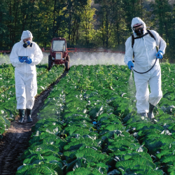 farmers in haz mat suits spraying a farm crop field with Monsanto Bayers Roundup glyphosate herbicide
