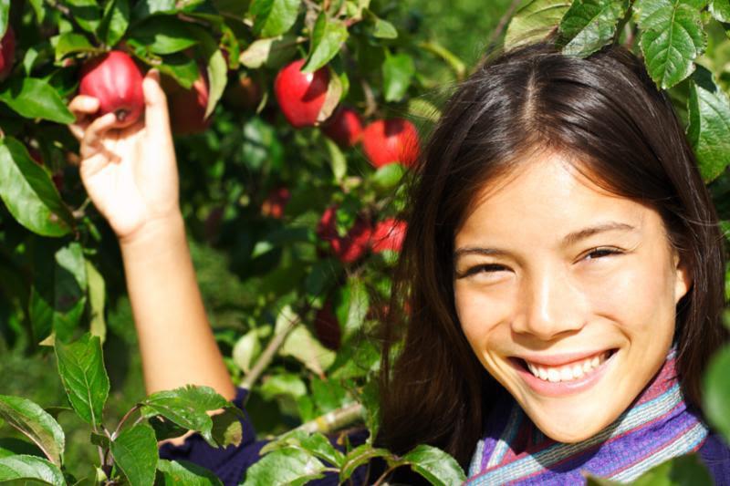 woman_apple_picking.jpg