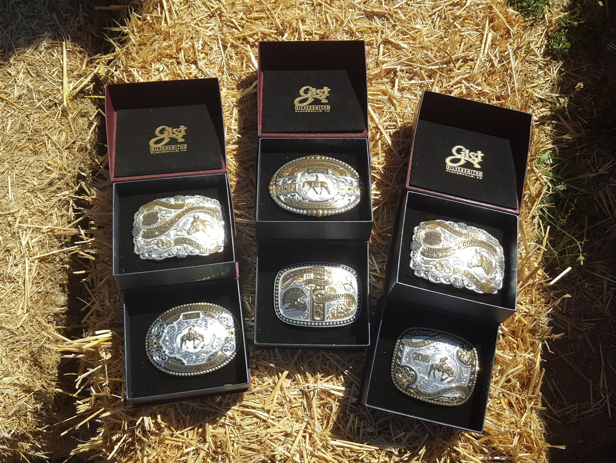 Horse Show Buckles 2